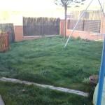 Este es el estado en que se encuentra un jardín particular en el que los propietarios no han sabido darle los cuidados necesarios.